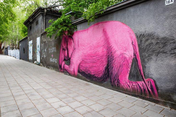 Mural słonia w Kownie